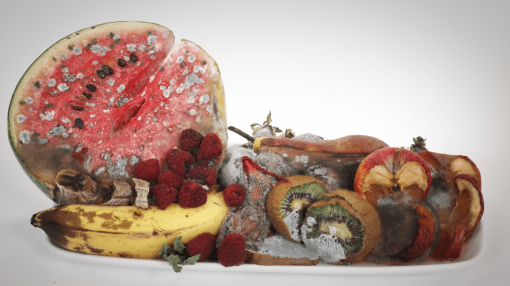 Decaying food